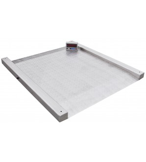 DIGIWEIGH STAINLESS STEEL